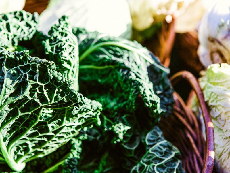 Aprende a: fermentar vegetales